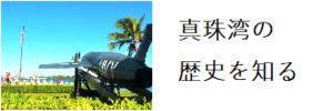 真珠湾 ツアー